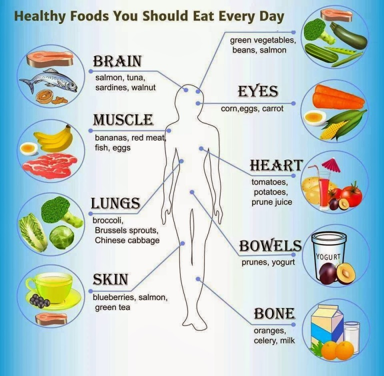 nutrition-image4